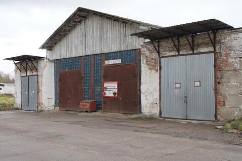 Аренда складских площадей, до 13000 метров, по 1470 кв. метр в год