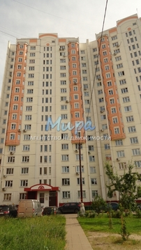 Люберцы, 3-х комнатная квартира, ул. Побратимов д.9, 7500000 руб.