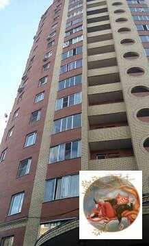 Щелково, 1-но комнатная квартира, Пролетарский пр-кт. д.4 к4, 20000 руб.