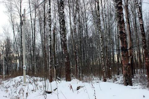 Лесной участок в Пучково - пригороде г. Троицк