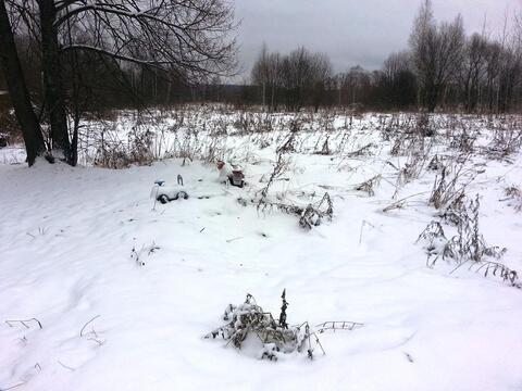 Участое ИЖС 30 сот д Гулынки, Егорьевский р-н, водопровод и свет
