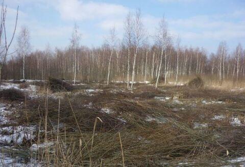 Продажа участка, Электрогорск, Росинка СНТ, 600000 руб.