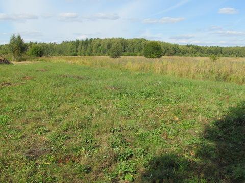 Продается земельный участок сельхозназначения вблизи д. Паткино Озерск