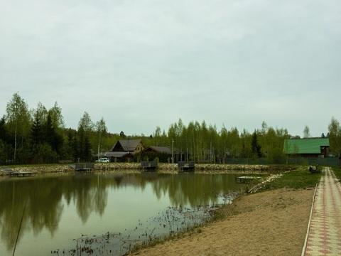 Земельный участок в лесу, 10 соток, Киевское ш, 55 км, Лесная радуга