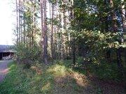 Продаю участок, ш. Горьковское, 50 км, Грибовское, 500000 руб.