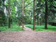 Лесной участок в д. Тимонино., 4300000 руб.