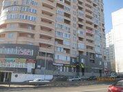 Железнодорожный, 2-х комнатная квартира, ул. Центральная д.8, 4300000 руб.