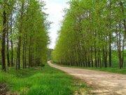 Участок в стародачном поселке 50 от МКАД, 500000 руб.