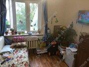 Щербинка (Новомосковский ао), Люблинская улица, 10 / 2-комн. квартира .