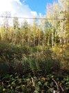 Продаю участок, СНТ Ватутинки на территории Новой Москвы, 3250000 руб.