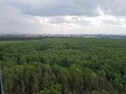 Одинцово, 1-но комнатная квартира, ул. Кутузовская д.10, 4900000 руб.