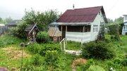 Дача с баней, 8 соток, сад, колодец, лес., 1000000 руб.