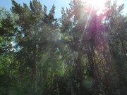 Боровское(Киевское) ш. 8км.от МКАД. Шикарный участок 41сот.Рассказовка, 22500000 руб.