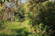Участок в пос. Кирпичного Завода, поселение Марушкинское, г. Москва, 3375000 руб.