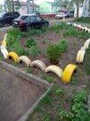 Клин, 1-но комнатная квартира, поселок Раздолье улица центральн д.9, 1100000 руб.