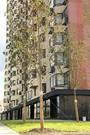 Москва, 1-но комнатная квартира, Грайвороновский 2-й проезд д.38 к1, 6131952 руб.
