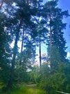 Продаю лесной участок. минское ш. 20км. Жаворонки, 4286000 руб.