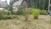 Участок в сосновом лесу с небольшим домиком 50 км от МКАД, 500000 руб.
