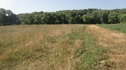 Земельный участок, Заокский район, Костино, 2200000 руб.