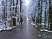 Филевский парк
