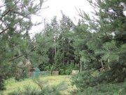 10 соток у самого леса, газ, охрана., 1600000 руб.
