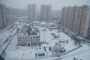Москва, 3-х комнатная квартира, ул. Барышиха д.32 к1, 11100000 руб.
