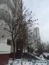 Москва, 3-х комнатная квартира, ул. Пронская д.6 к2, 3400000 руб.