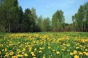 Земельный участок 11.96 сотки, ПМЖ, Новая Моква, 25 км. Калужское ш., 5008996 руб.