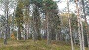 Участок крайний к лесу 8 соток 50 км от Москвы г. Павловский Посад., 600000 руб.