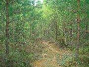 Продажа земельного участка 12 соток в СНТ Омхово у д. Митяево, 335000 руб.
