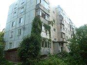 3х комнатная квартира Ногинский р-н, Зеленый п, 5