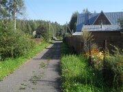 Участок у леса в стародачном поселке, 50 км от МКАД, 650000 руб.