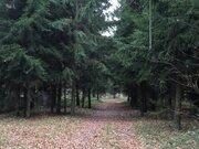 Участок 5,5 соток на краю леса, СНТ Дубрава, Климовск, Подольск., 1200000 руб.