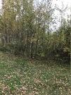 Замечательная участок в окружении леса, и озера, 600000 руб.