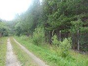 Участок в стародачном поселке рядом с Клязьмой, Павловский Посад, Гриб, 500000 руб.