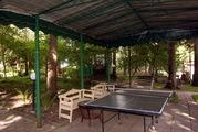 Сдается коттедж на лесном участке. Дом с бассейном на лето, 100000 руб.