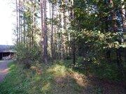 Участок у леса в стародачном поселке, 50 км от МКАД, 500000 руб.
