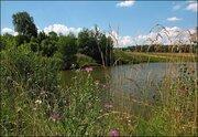 Носовихинское или Горьковское ш. 50 км от МКАД. Участок мечты, 650000 руб.