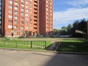 Пушкино, 2-х комнатная квартира, Набережная д.6, 38000 руб.