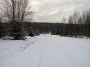 Участок в хвойном лесу, 360000 руб.