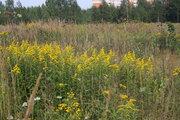 Земельный участок СНТ Пчёлка, 800000 руб.