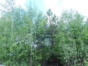 СНТ в городской черте Электрогорска, 370000 руб.