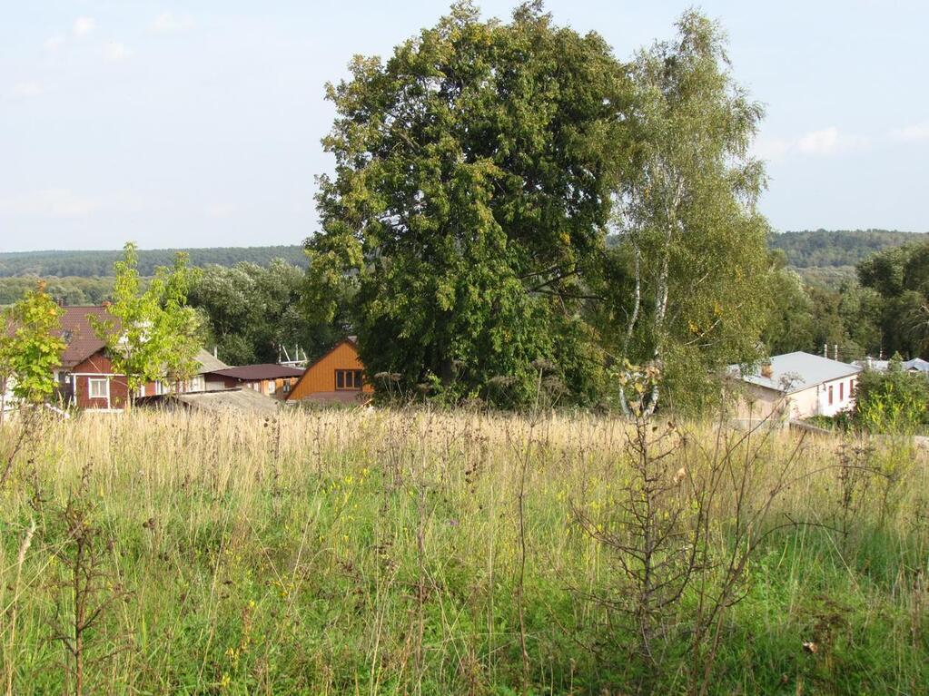 первым художественным село горы озерского района фото какую