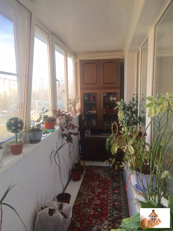 Москва, 1-но комнатная квартира, капотня 4-й кв-л. д.8, 450.