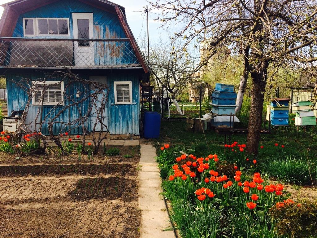 территории Тимирязевского куплю дом с участком в федино воскре Водитель Кокшетау для