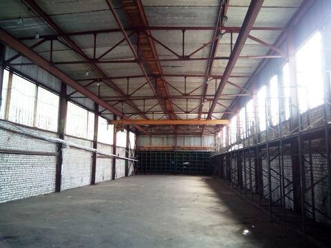 Сдам склад 507,2 кв.м. Руза , Волоколамское ш. 17