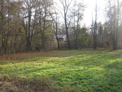 Земельный участок 40 соток в поселке Победа Мытищинского района