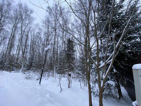 Лесной Участок, 25 соток, кп Финская Деревня, г. Чехов, свет оплачен