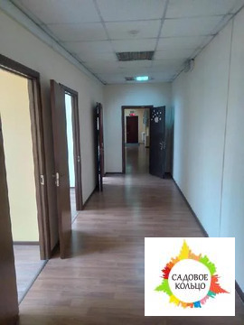 Офисное помещение 250 м2