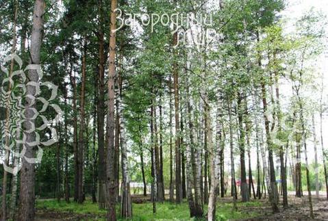 Егорьевское ш, 19 км от МКАД, Шмеленки
